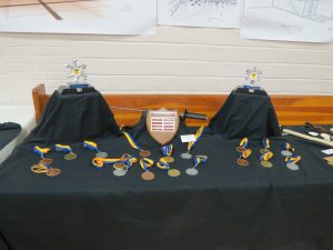 Nordschlag medals, HEMA medals, martial arts tournament medals,